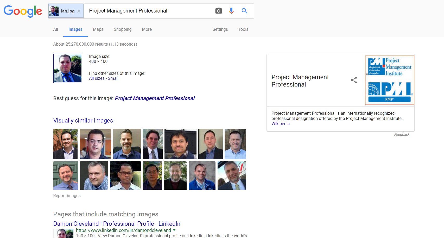 Google Image Search Engine: Ian Face Image