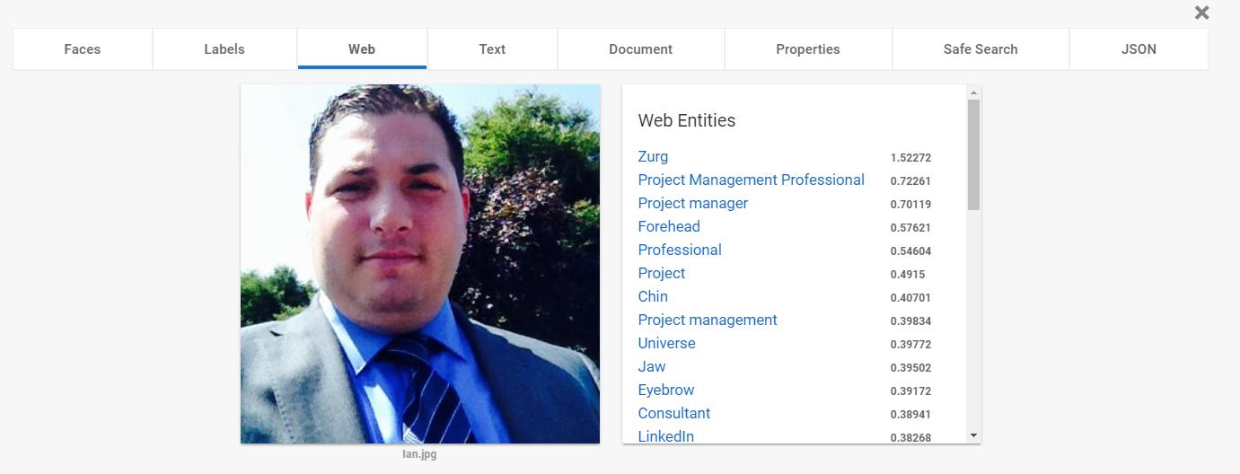Google Vision API - Web
